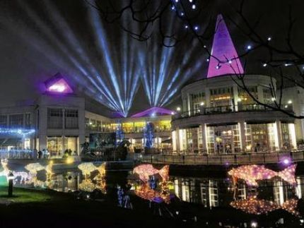 Let's Ride - Bluewater Christmas lights