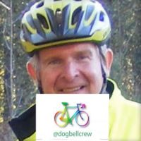 Profile photo for Nigel Bee