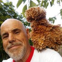 Profile photo for Chris Kinsey